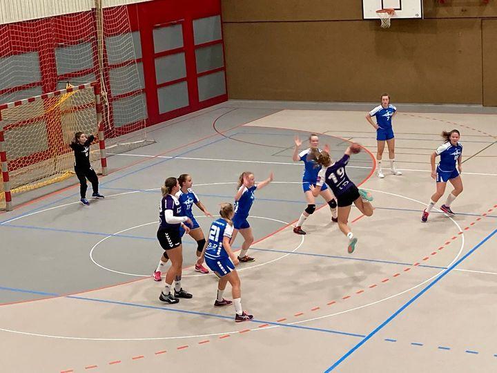 Spielbericht F-2.Liga: 19.09.2020 SG Zürisee – Albis Foxes Handball