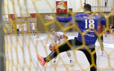 Nationalliga B, Playoff-Final: SG Wädenswil/Horgen – CS Chênois Genève 26:21 (14:13)