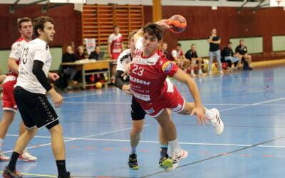 Spielbericht 1.Liga: HSG Leimental vs. SG Horgen/Wädenswil